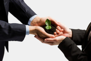 Building successful investor relations