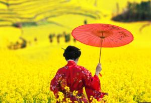 Japón tras la energía nuclear