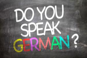 Focus sur l' allemand