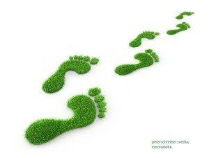 Eкологичен отпечатък / Ecological Footprint