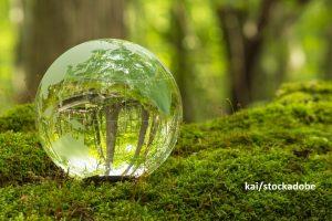 Nachhaltigkeitsberichte für internationale Stakeholder